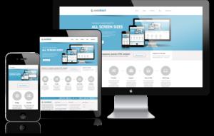 responsive website design picture